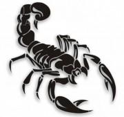 """Наклейка """"Скорпион"""""""